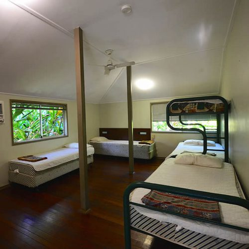 Ferntree Rainforest Lodge